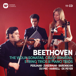 Beethoven : The complete violin sonatas, cello sonatas, string trios & piano trios