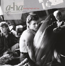 Hunting High And Low (30th Anniversary Edition)