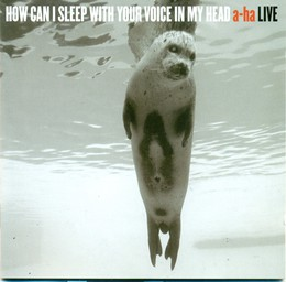 How Can I Sleep With Your Voice In My Head A-ha Live